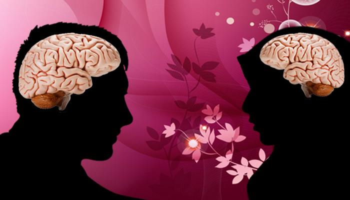 مقاربات سايكلو ـ فسلجية بين عقل المرأة وعقل الرجل