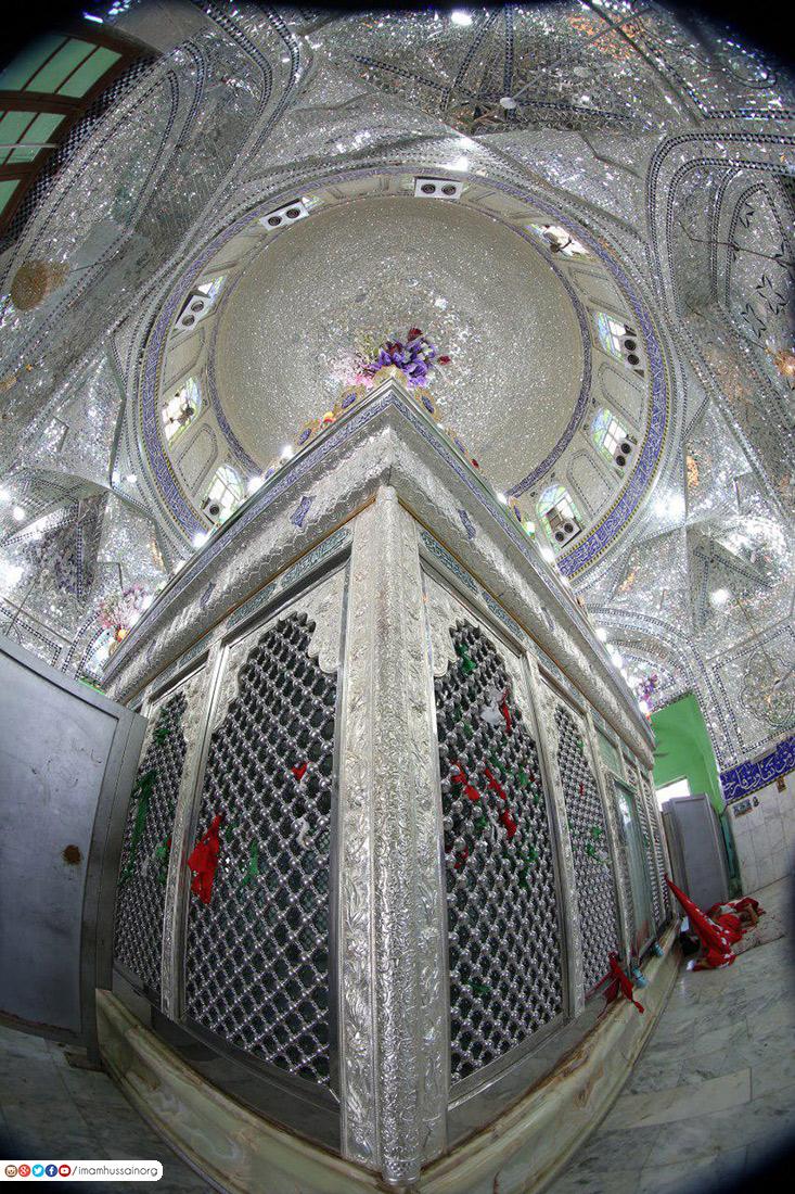 مرقد السيد علي بن الحسين حفيد ابي الفضل العباس عليهما السلام