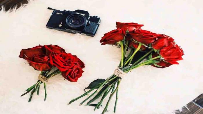 الورود الحمراء.. فرحة شعبان