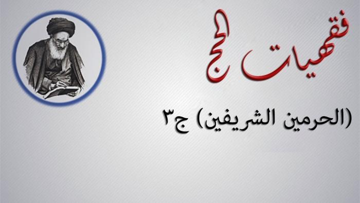 فقهيات الحج.. (الحرمين الشريفين) ج3